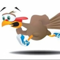 Maryville Turkey Trot 5K Review